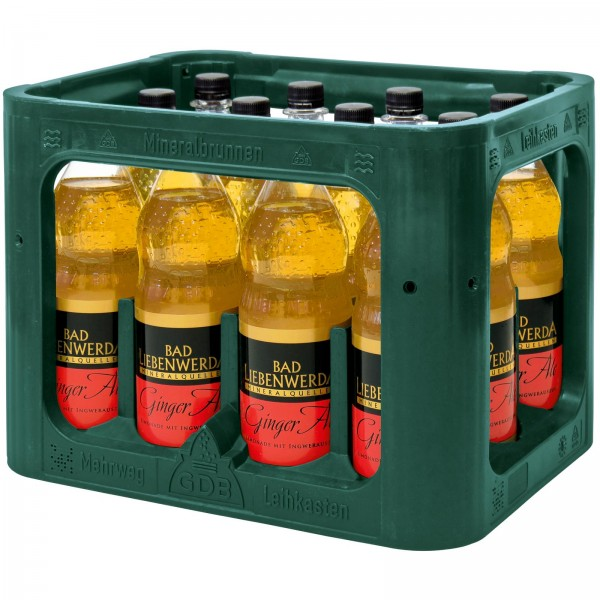 E3223 Bad Liebenwerda Ginger Ale 12 x 1,0l